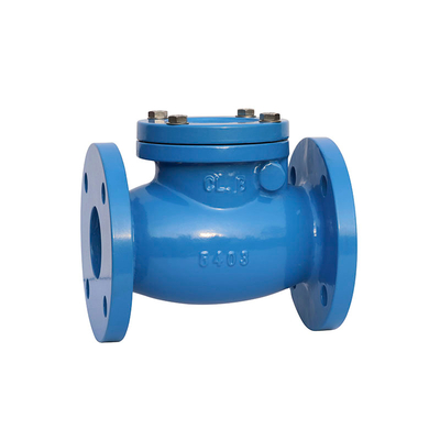 Swing Check Valve Cast Iron ANSI 125LB