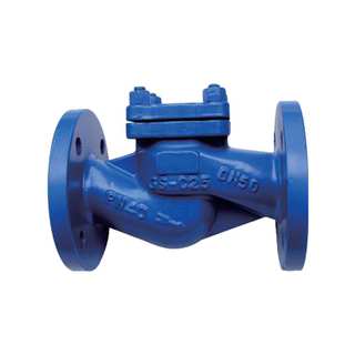 Lift Check Valve DIN3202 F1 Pn16 Cast Steel