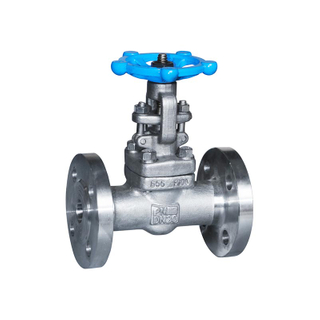 Forged Steel Gate Valve Flange F304 300LB
