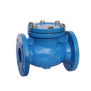 Swing Check Valve DIN3202 F6 Cast Iron Pn16