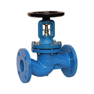 Bellow Seal Globe Valve Cast Iron PN16