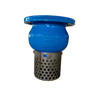 Foot Valve Cast Iron 150LB Stainless Steel Screen