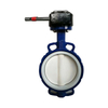 PTFE Seat Cast Iron PN16 Wafer Butterfly Valve