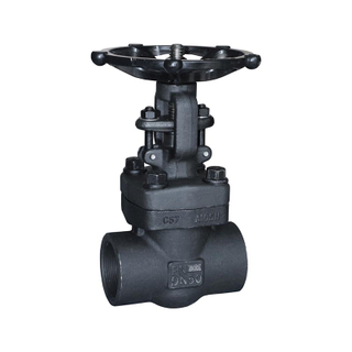Forged Steel Gate Valve A105 800LB SW Npt